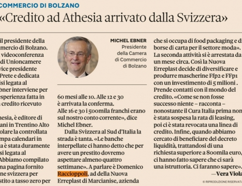 "Il ""Sole 24 Ore"" interview our CEO Domenico Raccioppoli"